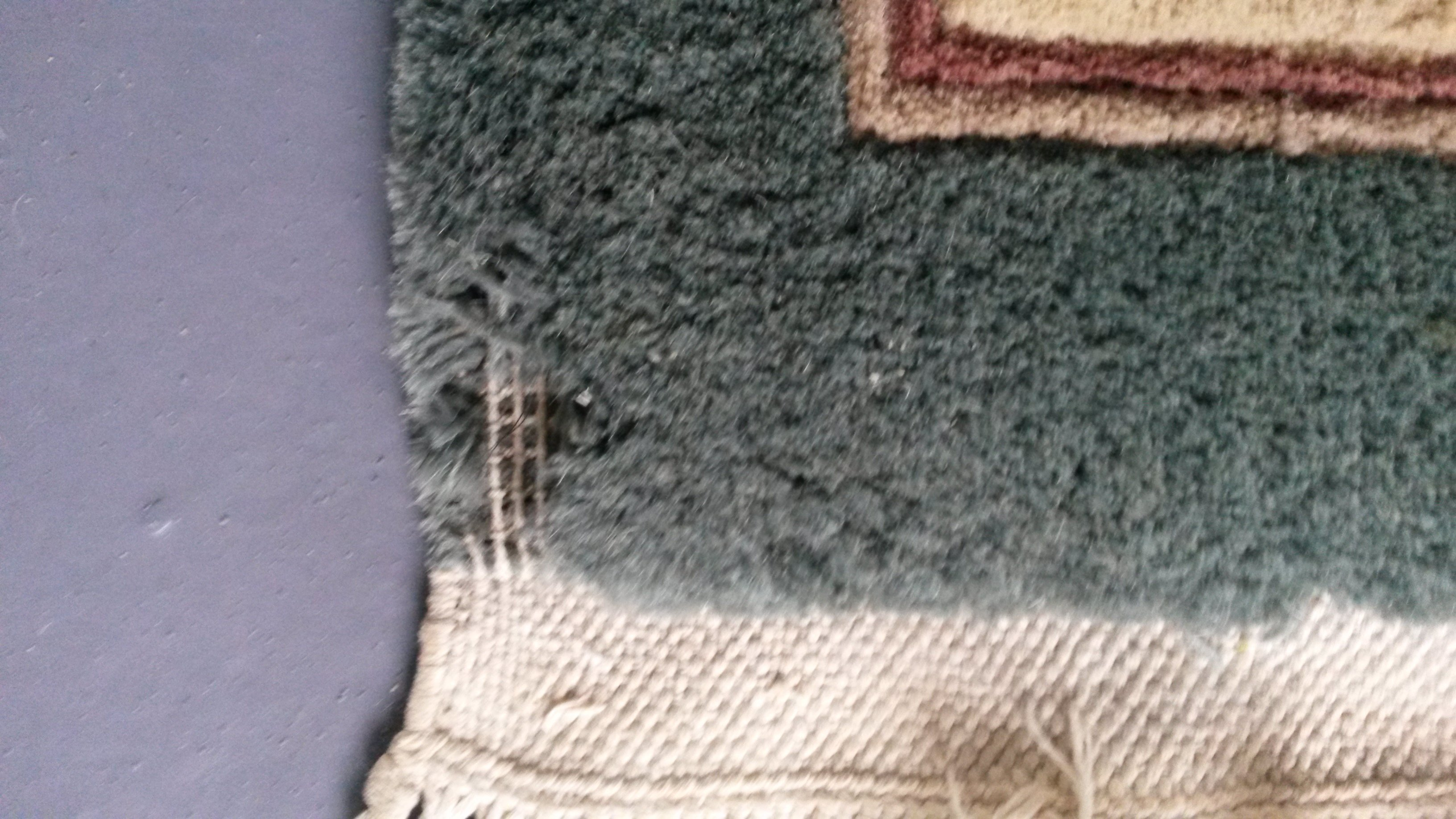 This shows a corner of a Chinese rug that was under a sofa that has been eaten away by succesive moths to the point where you can see the cotton backing