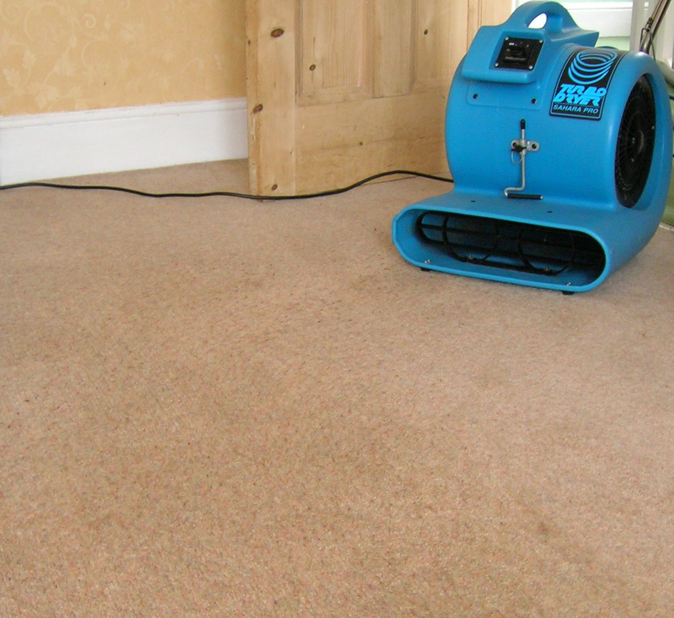 An air blower being used to dry a carpet